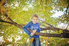 Усмехаясь пятилетний старый мальчик взбираясь в дереве стоковое изображение rf