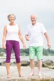 Усмехаясь старшие пары Стоковое Изображение