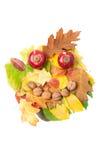 Усмехаясь сторона сделанная листьев падения осени и украшений падения Стоковое фото RF