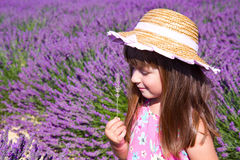 Усмехаясь цветки обнюхивать девушки в поле лаванды Стоковое Изображение