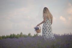 Усмехаясь цветки обнюхивать девушки в поле лаванды Стоковые Фотографии RF