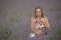 Усмехаясь цветки обнюхивать девушки в поле лаванды Стоковое фото RF