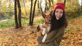 Усмехаясь шаловливая девушка с собакой на день осени видеоматериал