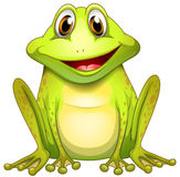 Усмехаясь лягушка Стоковая Фотография