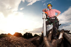 Усмехаясь lumberjack с цепной пилой стоковое изображение