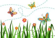 Усмешки бабочки Стоковая Фотография