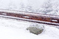Усовик на дороге Стоковые Фотографии RF