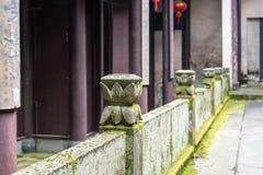 Усовик цветка лотоса Стоковая Фотография RF