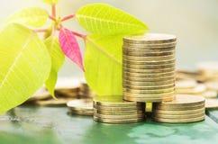 Успех в бизнесе - монетки денег золота Стоковые Изображения RF