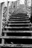 успех лестниц иллюстрации принципиальной схемы 3d деревянный Стоковое Изображение RF