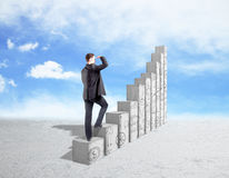 Успех и финансовая концепция роста Стоковая Фотография