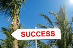 Успех подписывает внутри тропический лес успешный в концепции жизни и дела взгляд подкраской дорожного знака угла голубой широко  Стоковые Изображения RF