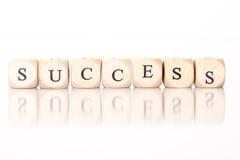 Успех, сказанный по буквам с письмами кости Стоковое Изображение RF