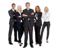 успешной бизнесмены белизны команды Стоковые Изображения