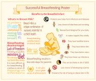 Успешный кормя грудью плакат Шаблон Infographic материнства Стоковые Изображения RF