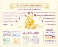 Успешный кормя грудью плакат Шаблон Infographic материнства Стоковая Фотография RF