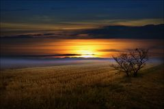 Успокоенный ландшафт Стоковое Изображение