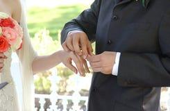 устанавливать кольцо Стоковая Фотография