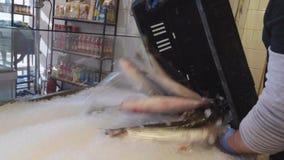 Устанавливающ свежих рыб в льде для продажи в крытом рынке акции видеоматериалы