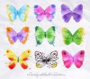 Установите бабочку акварели Стоковые Фото