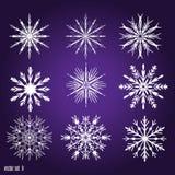 Установите 9 белых различных снежинок Стоковое Изображение RF