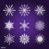 Установите 9 белых различных снежинок Стоковые Фото