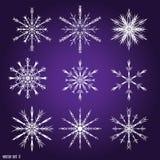 Установите 9 белых различных снежинок Стоковое Фото