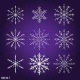 Установите 9 белых различных снежинок Стоковые Изображения