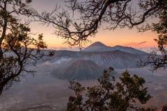 Установите вулкан active с рамкой дерева на восходе солнца стоковая фотография rf