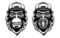 Установите гориллы в бейсбольной кепке на белой предпосылке Конструируйте элемент для логотипа, ярлыка, эмблемы, знака, плаката,  иллюстрация штока