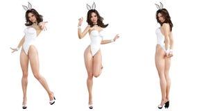 Установите девушку зайчика предпосылка изолировала ноги длиной над сексуальный белой женщиной Красные ботинки купальника Стоковая Фотография