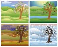 Установите дерево сезонов, вектор Стоковое Изображение RF