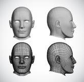 Установите женские головки. Вектор Стоковые Фотографии RF