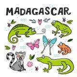 Установите животных Мадагаскара Нарисованная рукой иллюстрация вектора стоковая фотография