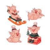 Установите изолированного стиля мультфильма свиней вектор стоковые фотографии rf