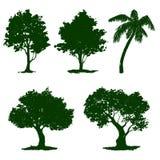 Установите иллюстрацию вектора дерева покрашенный Стоковые Фотографии RF