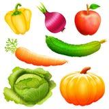Установите иллюстрацию собрания овощей иконы Стоковая Фотография