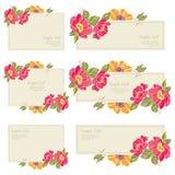 установите карточку приглашения свадьбы Стоковая Фотография
