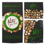 Установите карт вектора с гайками разных видов Грецкий орех, кокос, мускат, фундук, пекан, миндалина, арахис, макадамия иллюстрация штока