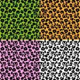 Установите кожу леопарда скороговорки бесплатная иллюстрация