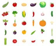 Установите овощей изолированных на белой предпосылке Вегетарианская органическая здоровая еда r бесплатная иллюстрация