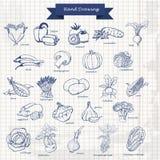 установите овощи Иллюстрация эскиза чертежа руки вектора Стоковые Изображения