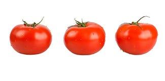 установите овощи Стоковые Изображения