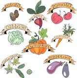 установите овощи Стоковое Изображение