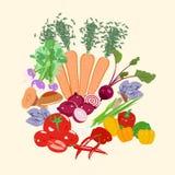установите овощи Стоковая Фотография RF