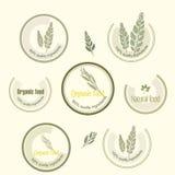Установите логотип для органически, который выросли еды, вектор Стоковые Изображения RF