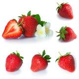 Установите от ягод клубники Изолировано на белизне Стоковое Изображение RF