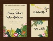 Установите печатание свадьбы Приглашение, карточка гостя, сохраняет дату Иллюстрация винтажного вектора ботаническая Стоковое Изображение RF