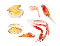 Установите различных морепродуктов Форель, креветка, scallops, когти камчатского краба o бесплатная иллюстрация