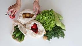 Установите рук сумки строки eco овощей сток-видео